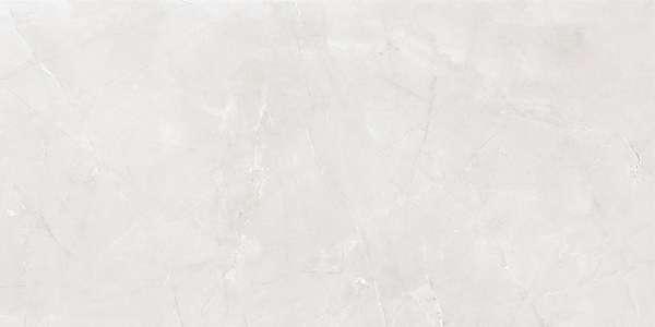 - 600 x 1200 mm (24 x 48 inç) - armani-light-grey-1