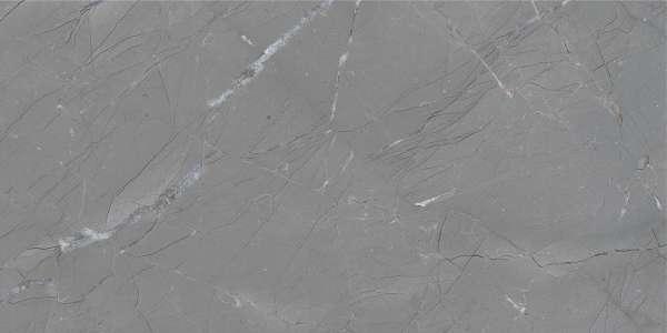 - 600 x 1200 mm (24 x 48 inç) - basalto-grey-1