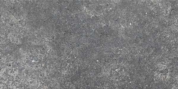 - 600 x 1200 mm (24 x 48 inç) - aurisina-black-(carving)-1